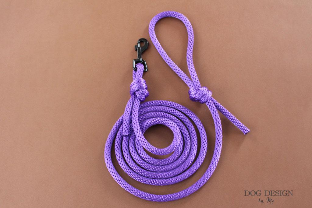 Laisse en corde violet